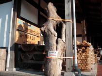 木木館入り口