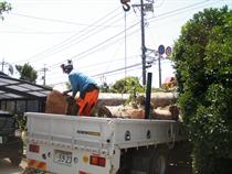 伐採運搬作業
